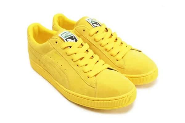 Puma amarillas