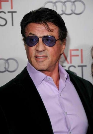 Moda Stallone
