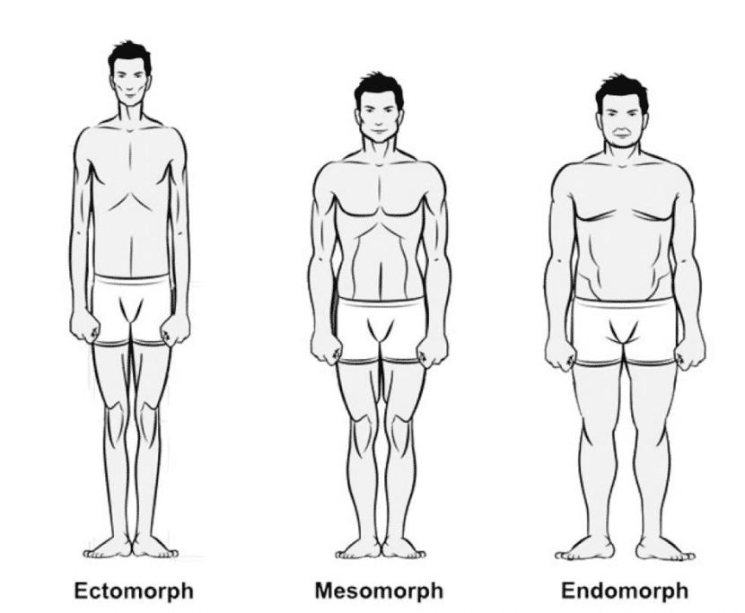 tipos-de-cuerpo-hombre