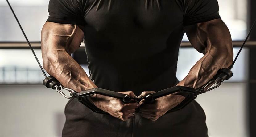 ejercicios brazos full body