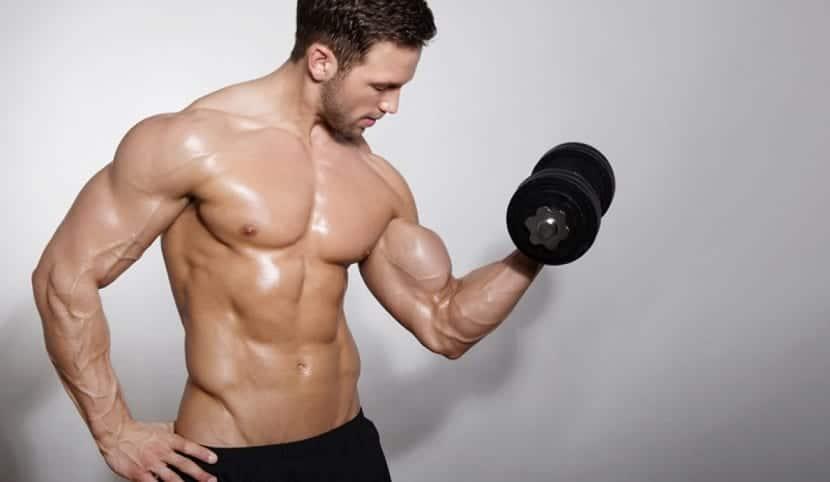 necesidades de la musculacion