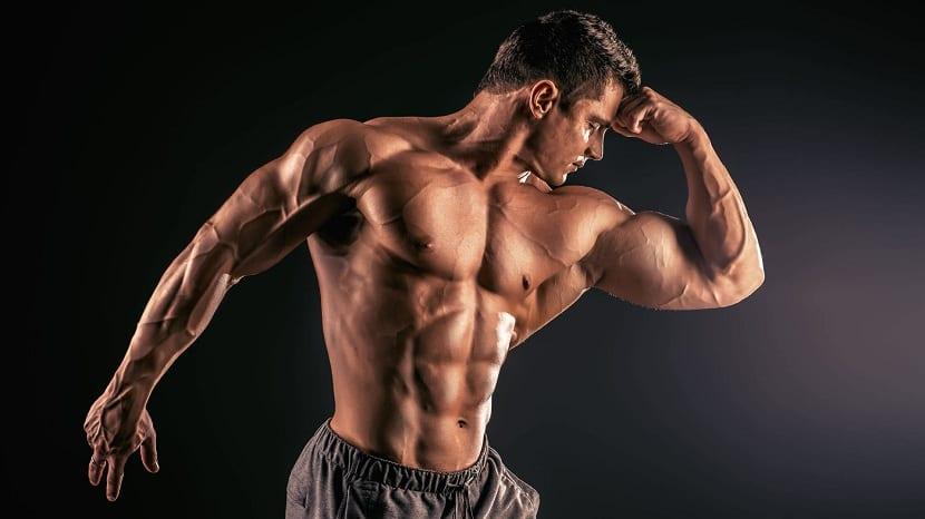 Muscular aumentar rutinas para volumen