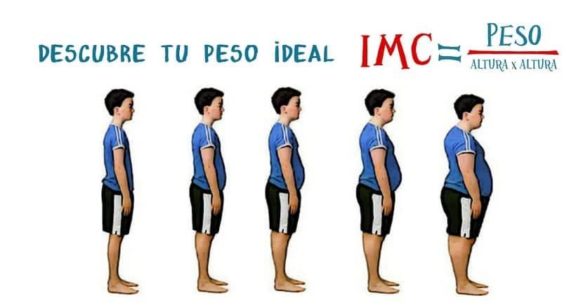 Calculo del índice de masa corporal