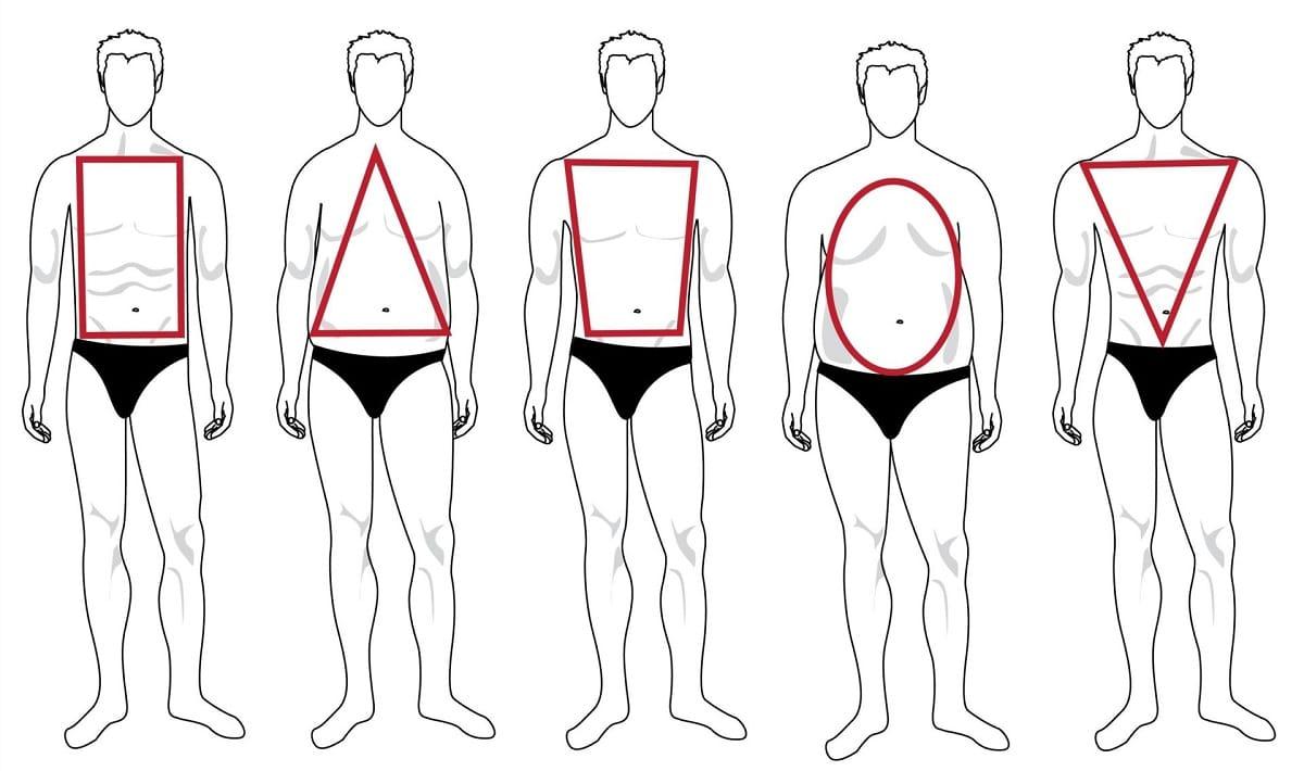 tipos de cuerpos de hombre