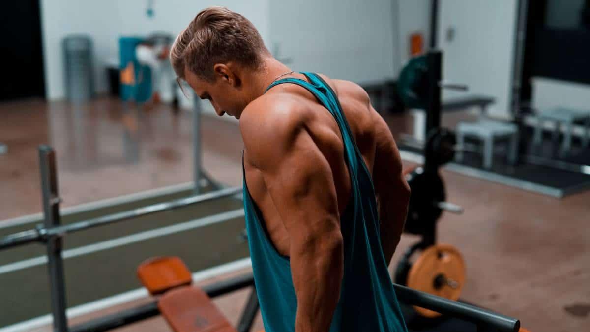 triceps grandes